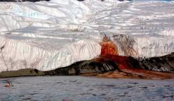 Bí Ẩn Dòng Suối Máu Ở Nam Cực Được Khám Phá? Tìm Hiểu Nguyên Nhân Của Dòng Nước Đỏ